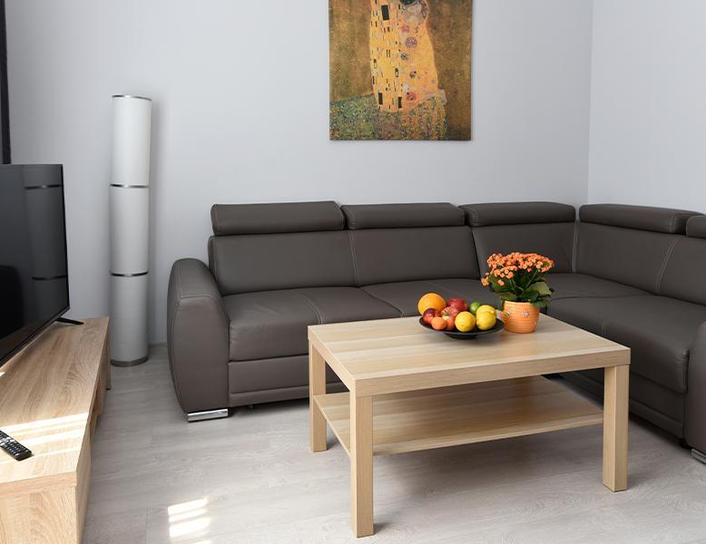 Apartament Dwupokojowy, sofa narożna, stolik, telewizor